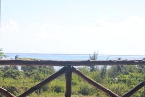 Palumbo Kendwa